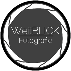 Logo Weitblick5 230px